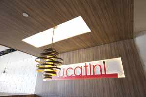 wooden ceiling with liner lights