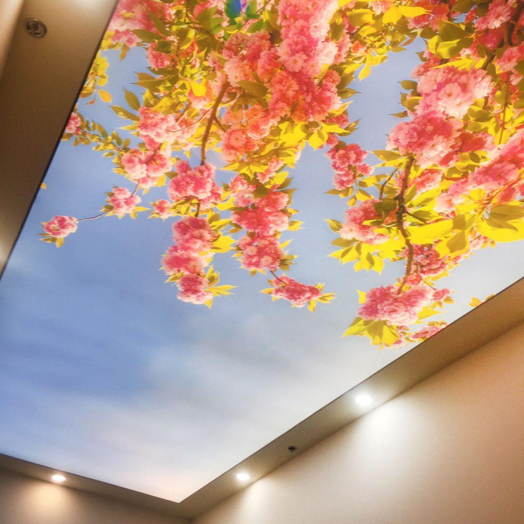 flower back lit printed ceiling in calgary