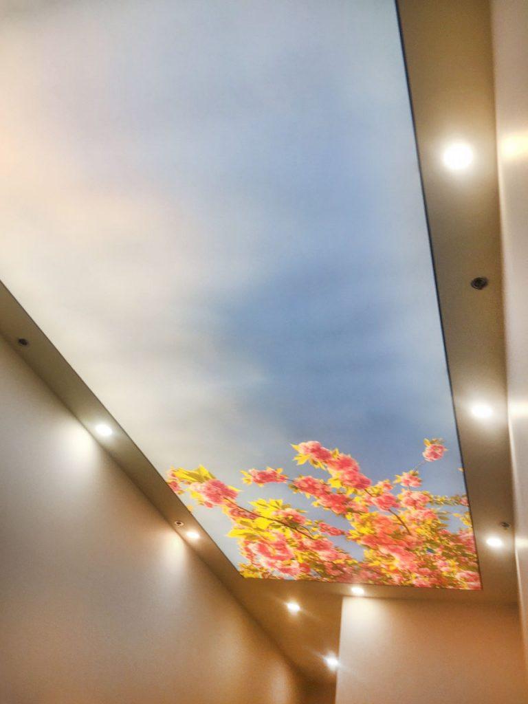 Clover Living. Calgary printed backlit ceiling