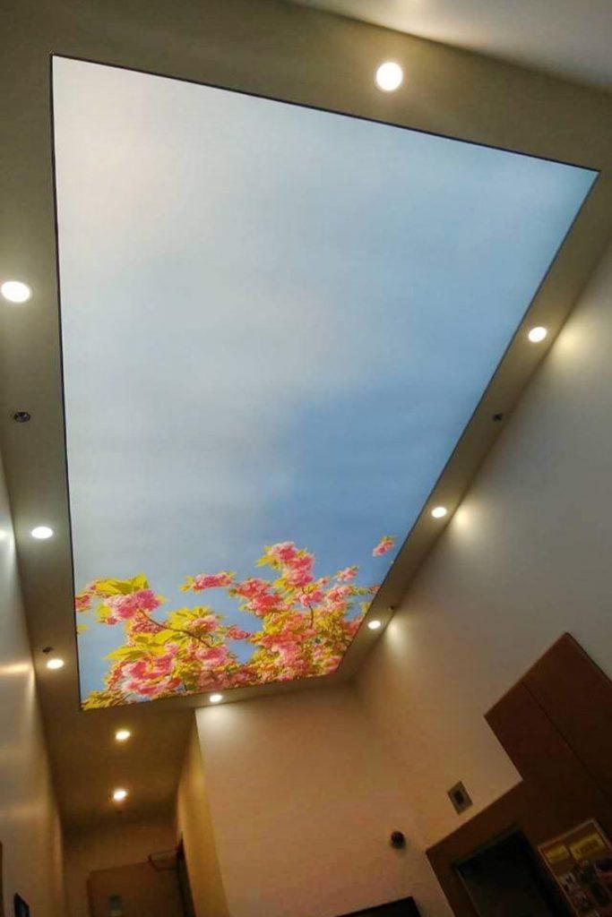 custom hallway with amazing back lit printed ceiling