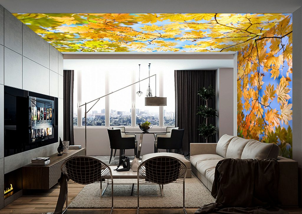 custom living room with amazing back lit printed ceiling and wall Delhi