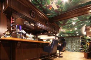 basement bar with stretch ceiling photos-Printed Ceilings india