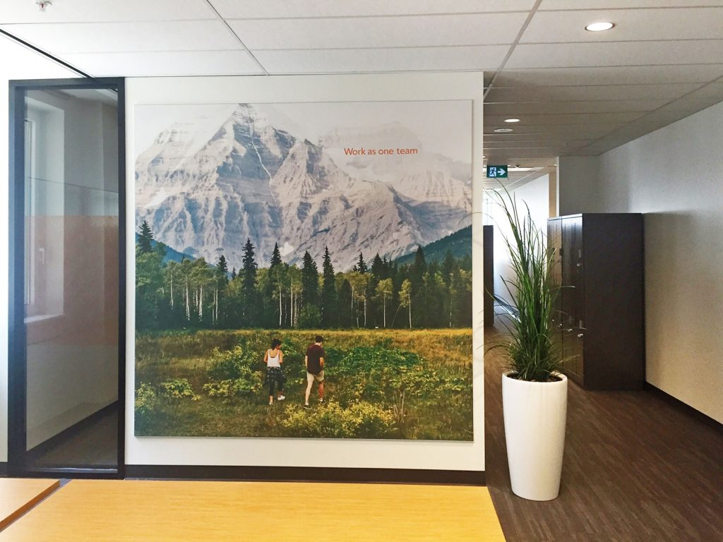 nature and mountains on custom wall cover in amazing office