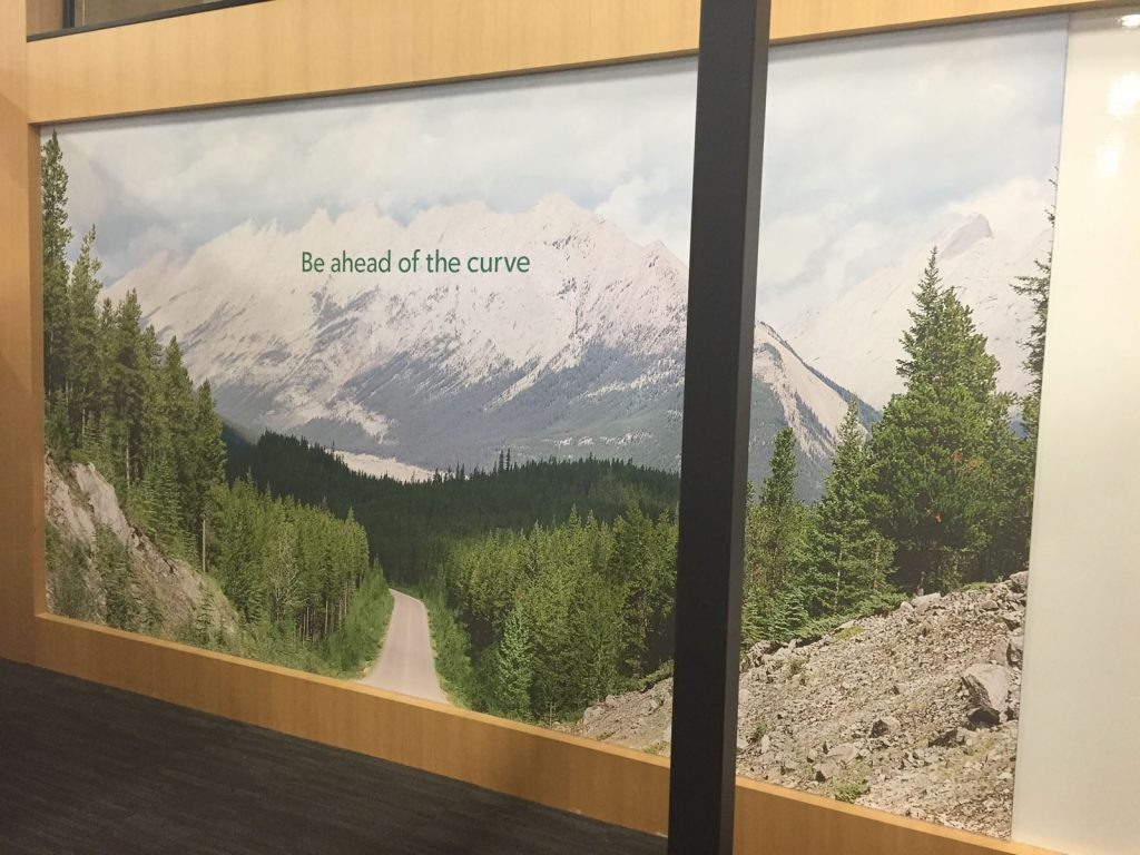 printed image of mountain in rogers office