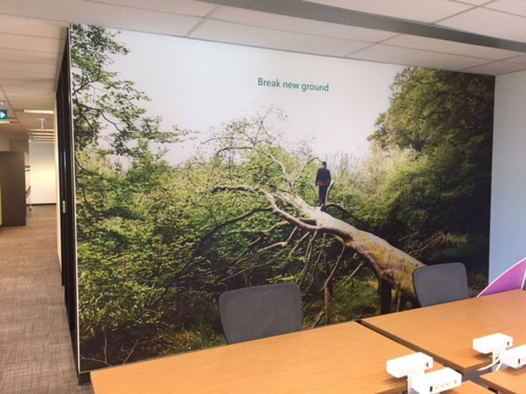 nature printed custom wall cover in rogers office