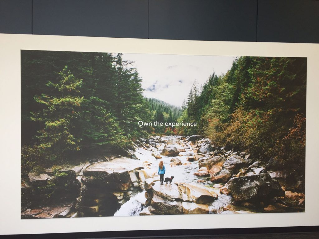 nature printed custom wall cover in luxury office