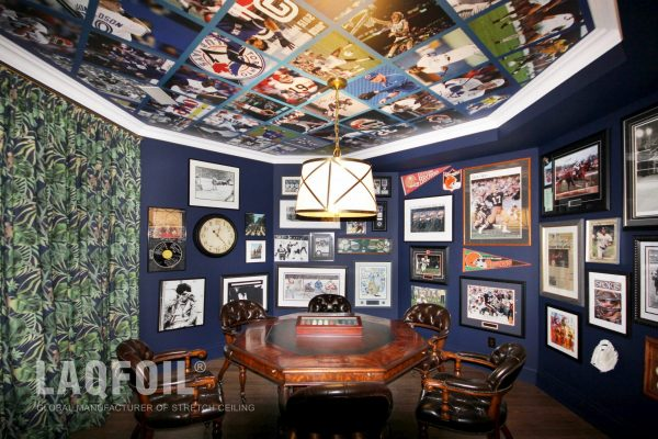 luxury room with printed ceiling and walls