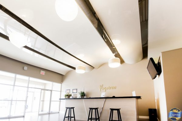 multilevel stretch ceiling in reception area